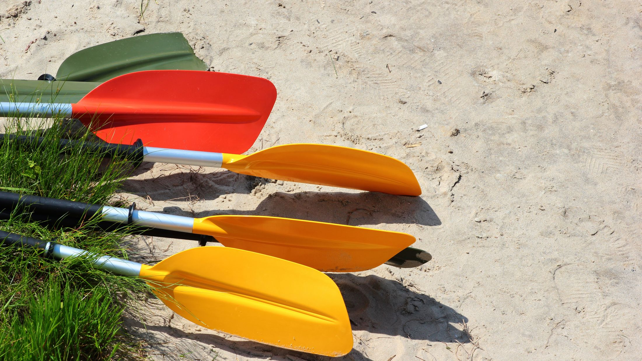 Colorful kayak paddles and oars on sandy beach; Shutterstock ID 425630623; PO: Sovereign