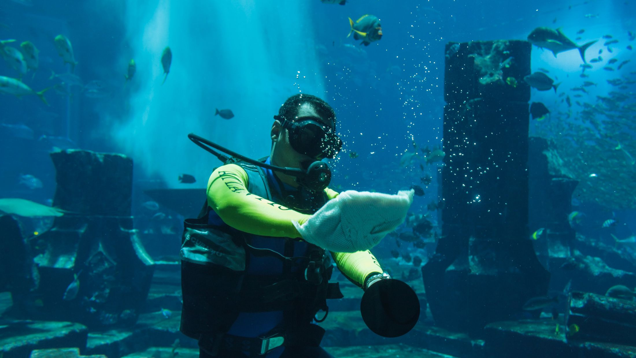 116853_Tank Cleaner Atlantis The Palm_Dubai_M Johnstone_Fam Trip_June 2015-001-Hybris